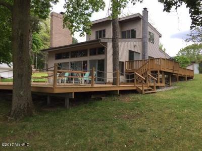 Belding Single Family Home For Sale: 2737 W Bricker Road