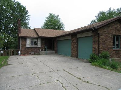 Rockford Single Family Home For Sale: 8113 Cowan Lake Drive