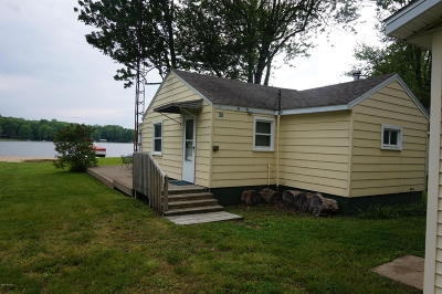 Gobles Single Family Home For Sale: 36 E Duck Lake Drive