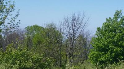 Ludington Residential Lots & Land For Sale: 2313 S Lakeshore Drive