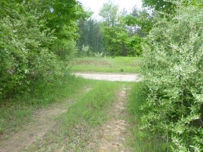 Scottville Residential Lots & Land Active Contingent: 00 N Lasalle