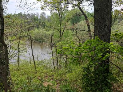 Saugatuck, Douglas Residential Lots & Land For Sale: 6010 River Ridge Drive