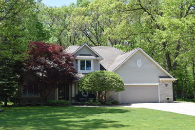 Grand Haven Single Family Home For Sale: 13807 Hofma Drive