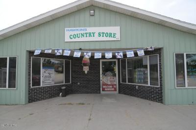 Reed City Commercial For Sale: 13629 N Cottonwood Avenue
