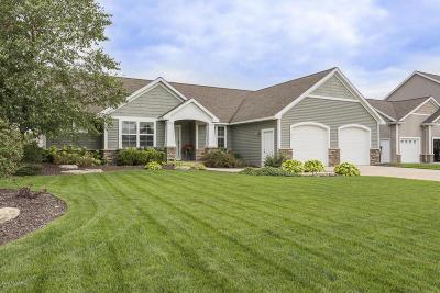 Hudsonville Single Family Home For Sale: 7002 Glacier Drive