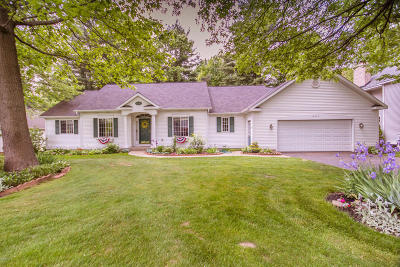 Holland Single Family Home For Sale: 14640 Creek Edge Drive