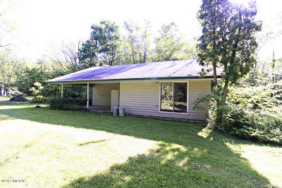 Van Buren County Single Family Home For Sale: 37091 Paw Paw Road