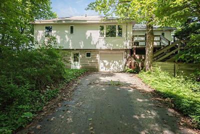 Stevensville Single Family Home For Sale: 5812 Dunham Avenue