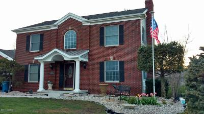 Coopersville Single Family Home For Sale: 707 Ridgefield Drive