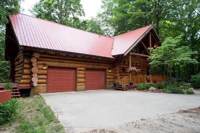 Fremont MI Single Family Home For Sale: $429,000