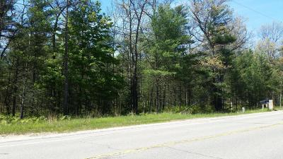 Oceana County Residential Lots & Land For Sale: Business 31