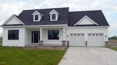 Coopersville Single Family Home For Sale: 293 Plum Lane