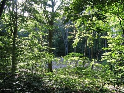 Holland, West Olive Residential Lots & Land For Sale: 65th Street