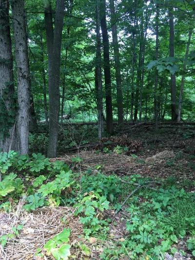 Eaton County Residential Lots & Land For Sale: 7251 Coneflower Court