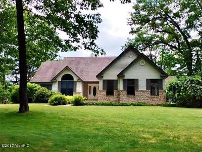Mecosta County Single Family Home For Sale: 8099 Haight Drive