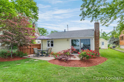 Middleville Single Family Home For Sale: 10784 Shady Lane Drive