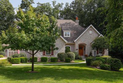 Kalamazoo Single Family Home For Sale: 2267 Shelter Pointe