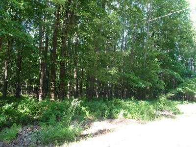 Canadian Lakes Residential Lots & Land For Sale: 12053 St. Johns Drive