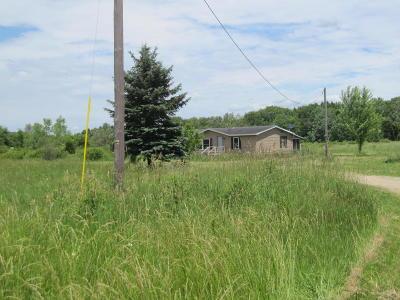 Allegan County, Berrien County, Cass County, Van Buren County Single Family Home For Sale: 27473 41st Street