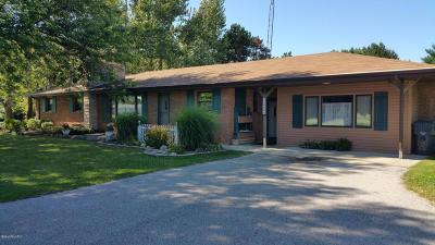 Benton Harbor Single Family Home For Sale: 7089 N Branch
