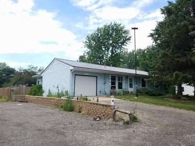 Lake Odessa MI Single Family Home For Sale: $164,900