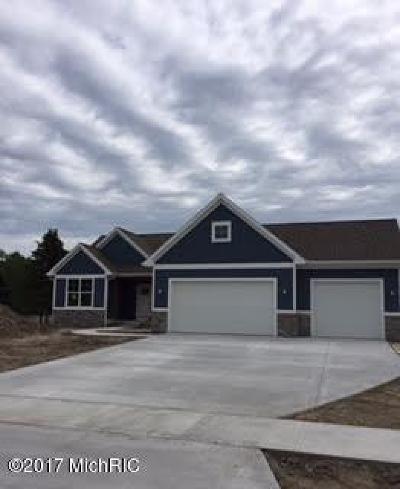 Jenison Single Family Home For Sale: 9080 Cedar Lake Drive