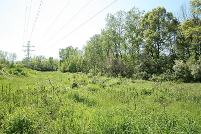 Benton Harbor MI Residential Lots & Land For Sale: $225,000