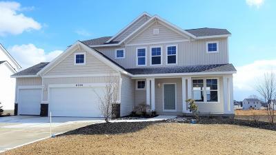 Hudsonville Single Family Home For Sale: 6596 Alward