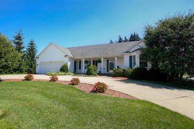 Hudsonville Single Family Home For Sale: 3514 New Holland Street