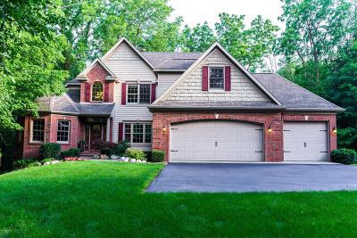 Byron Center Single Family Home For Sale: 9325 Eastern Avenue SE