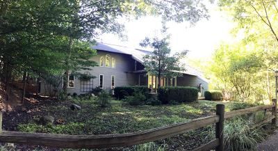 Pentwater Single Family Home For Sale: 6755 N Glen Trail #off Ches