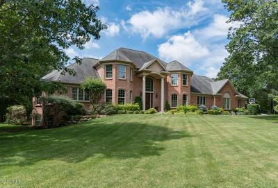 Kalamazoo Single Family Home For Sale: 5605 Blue Jay Drive