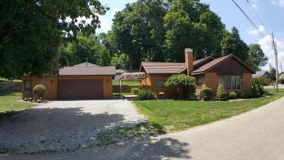 Vandalia Single Family Home For Sale: 14885 Birch Lakeshore