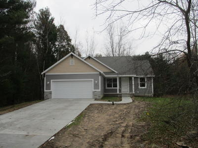 Ludington Single Family Home For Sale: 1098 N Hillside Drive