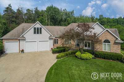 Holland Single Family Home For Sale: 10646 Macatawa Lane