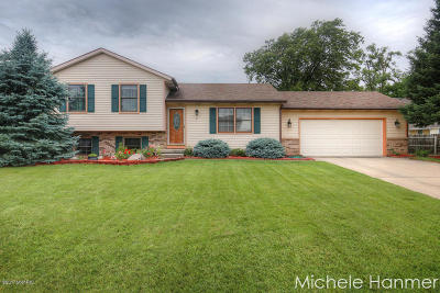 Grandville Single Family Home For Sale: 4181 Arbortown Drive SW