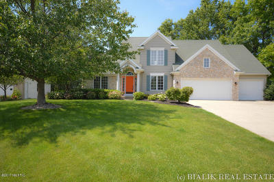 Hudsonville Single Family Home For Sale: 7828 Meadowood Drive