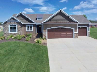 Dorr Single Family Home For Sale: 3475 Hawthorne