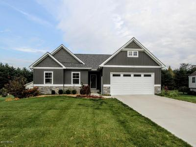 Lake Odessa MI Single Family Home For Sale: $299,900