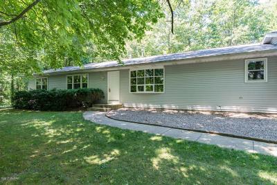 Kalamazoo Single Family Home For Sale: 6736 W D Avenue