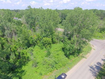 Residential Lots & Land For Sale: Jackson SW
