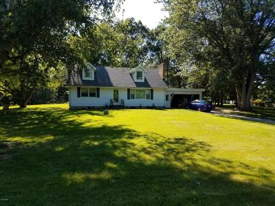 Berrien County Single Family Home For Sale: 2512 S Park Road
