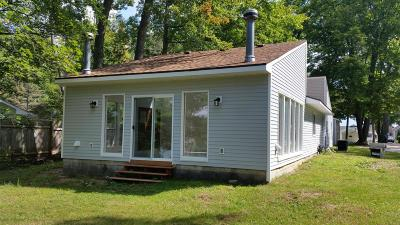 Newaygo County Single Family Home For Sale: 9625 S Peninsula Drive