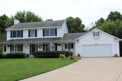Jenison Single Family Home For Sale: 8533 Willow Run Dr