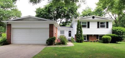 Portage Single Family Home For Sale: 1407 Regina Ave