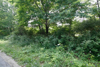 Mattawan Residential Lots & Land For Sale: 22775 38th Avenue
