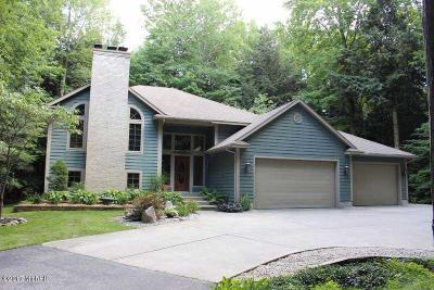 Spring Lake Single Family Home For Sale: 16778 Tall Trees Lane