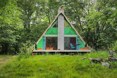 Fremont MI Single Family Home For Sale: $120,000