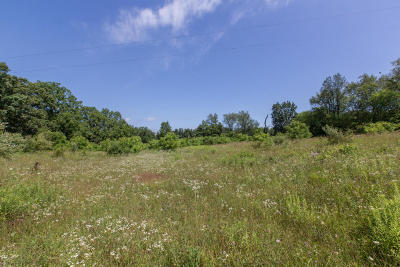 Residential Lots & Land For Sale: 29271 F Drive South Drive S