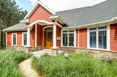 Holland, West Olive Single Family Home For Sale: 8263 Olive Shore Avenue